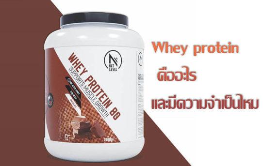 Whey protein คืออะไร และมีความจำเป็นไหม ?